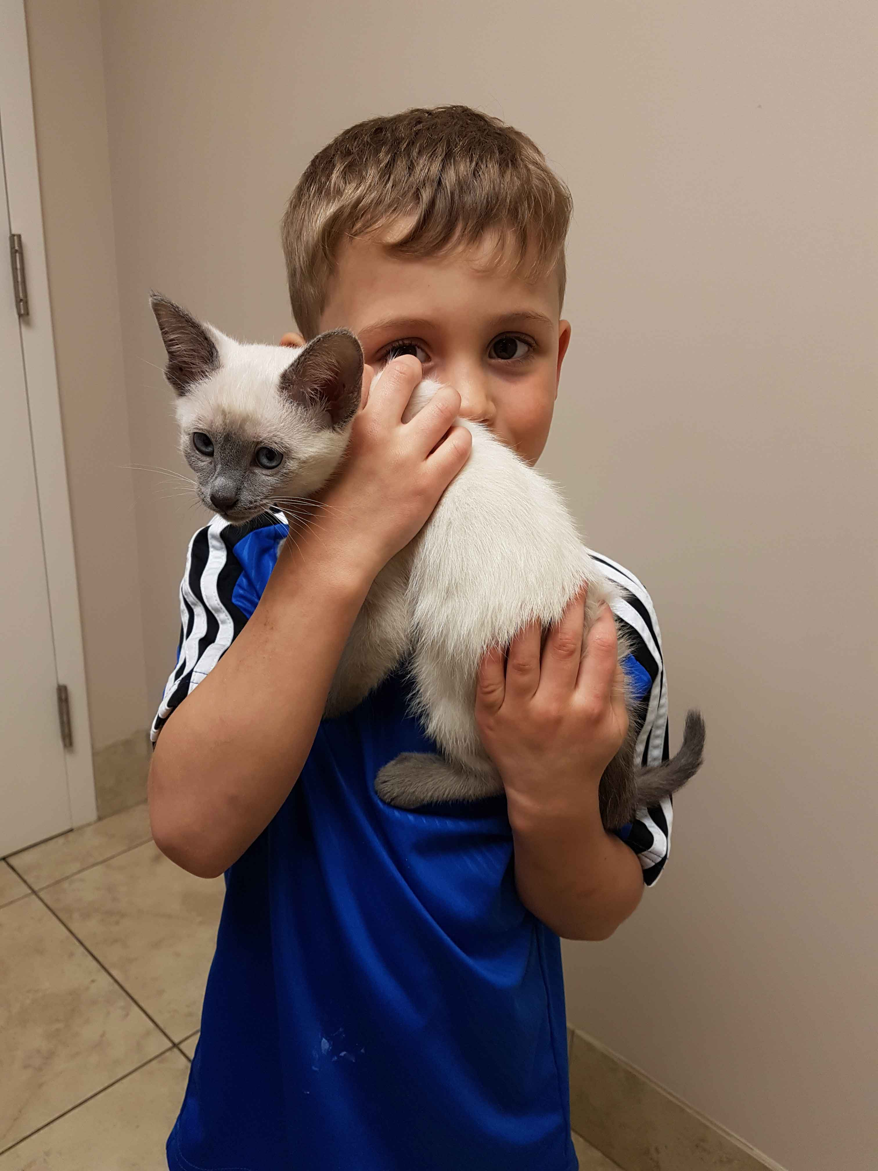 kid with cat