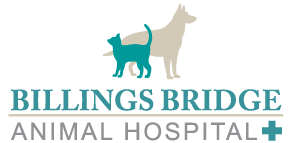 Billings Bridge Animal Hospital